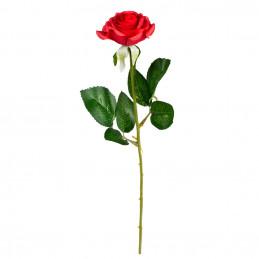 Rose (43 cm)